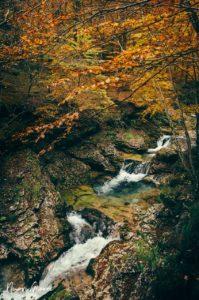 Cascate della Val D'Arzino fotografate da Alice