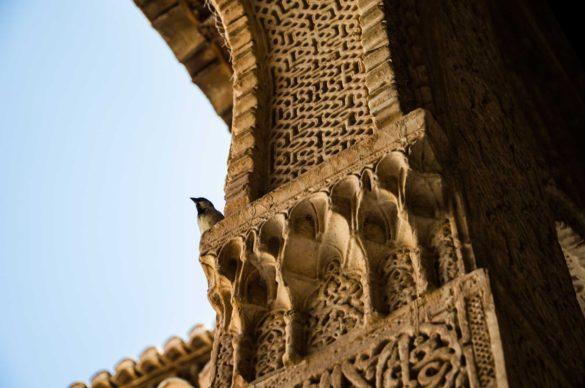 granada alhambra dettaglio