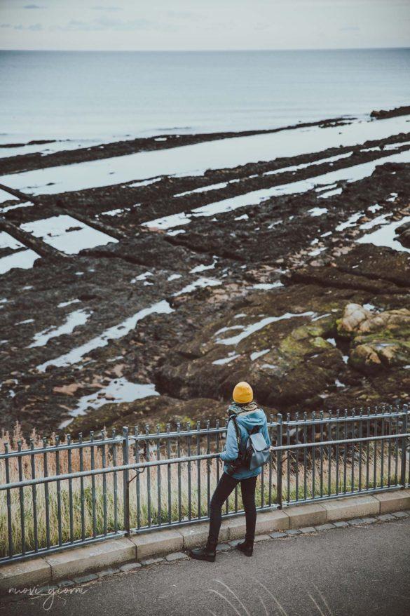 Saint Andrews St Andrews Scotland Scozia Nuovi Giorni Blog Walk Camminata