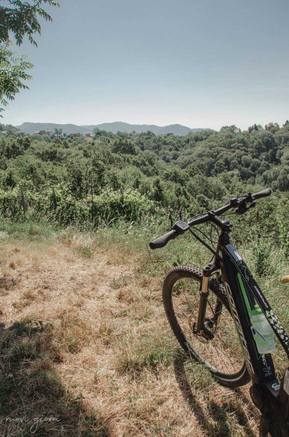 BrickScape Blog Tour 2019 - Nuovi Giorni Blog - E-bike - Friuli Venezia Giulia - Vista