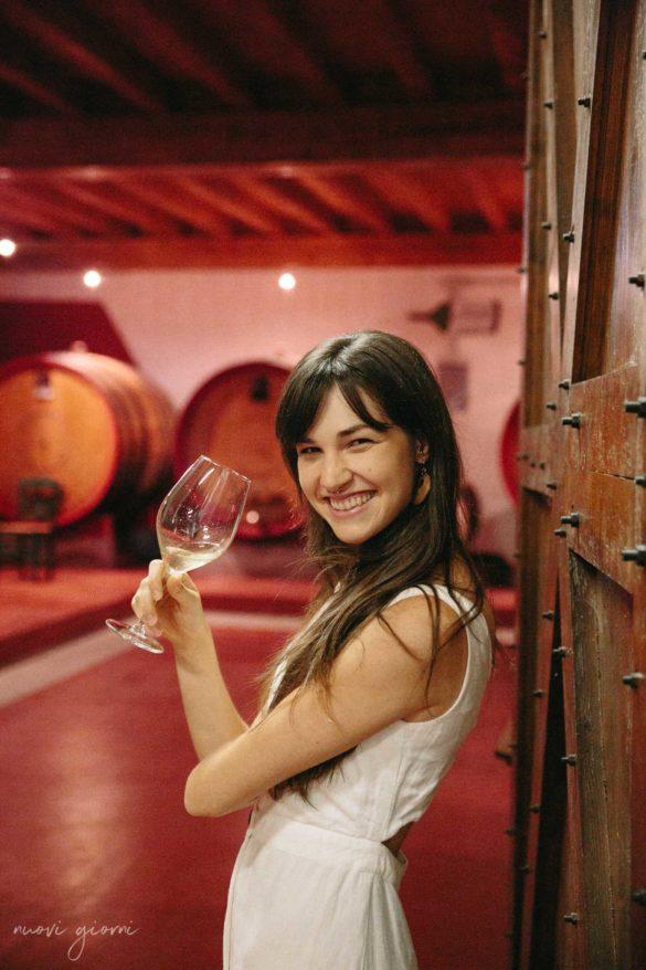 Cantine Friuli Venezia Giulia Vino Nuovi Giorni Blog 24