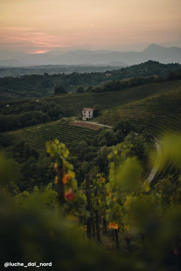 Cantine Friuli Venezia Giulia Vino Nuovi Giorni Blog 39