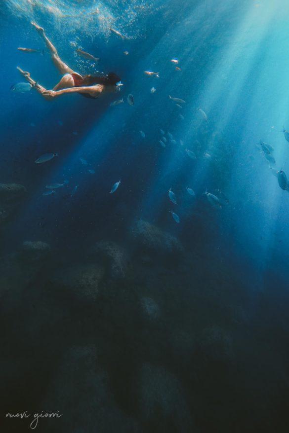 Vacanza in Italia alle Isole Tremiti - Alice - Pesci - Mare - Nuovi Giorni Blog