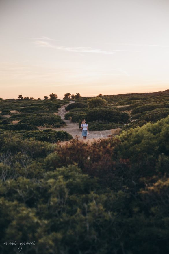 Vacanza in Italia alle Isole Tremiti - Alice fra i Cespugli- San Nicola - Nuovi Giorni Blog