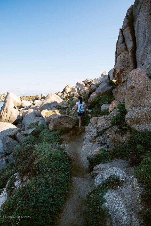 Corsica Isola di Lavezzi Foto Nuovi Giorni Blog Trekking