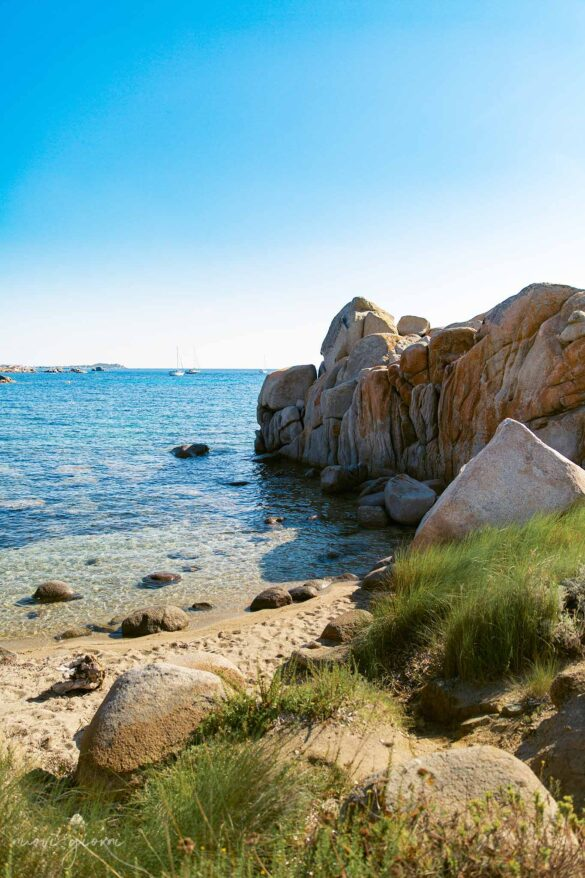 Spiaggia Nascosta natura Corsica Isola di Lavezzi Foto Nuovi Giorni Blog Ambiente Boy