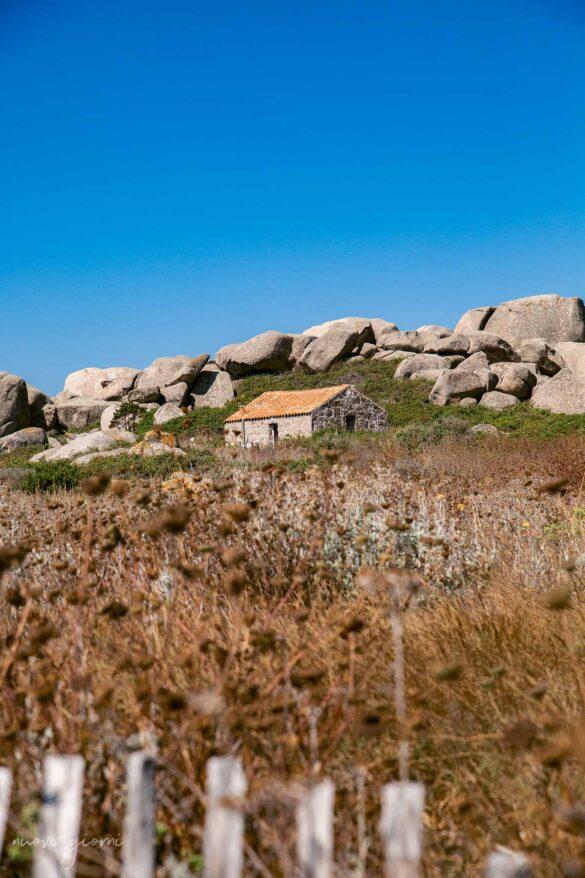 Corsica Isola di Lavezzi Foto Nuovi Giorni Blog Ambiente