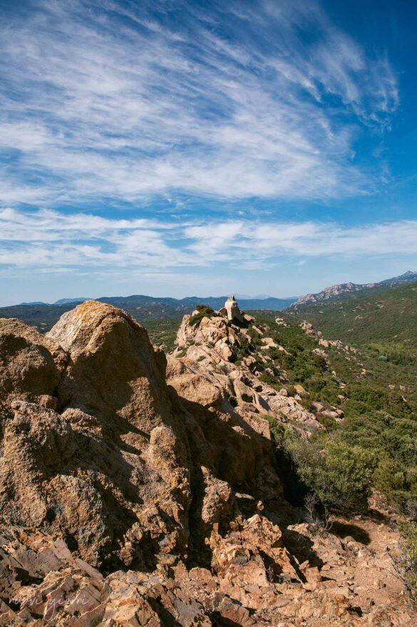Corsica Cala Roccapina Nuovi Giorni Blog Leone Lion rock