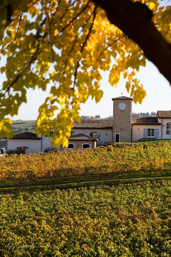 Autunno Borgo Condé Wine Resort Forlì Vacanza Barbecue Campfire Lodge di Marco Agostini